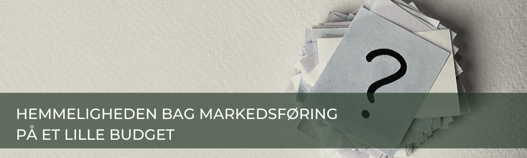 Oversér du denne mulighed for markedsføring på et lille budget?